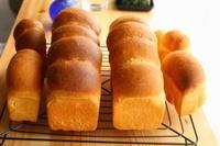 無塩パン - 小麦の時間   京都の自宅にてパン教室を主宰(JHBS認定教室)