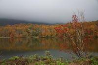 糸魚川市蓮華白池の紅葉後半 - 日本あちこち撮り歩記