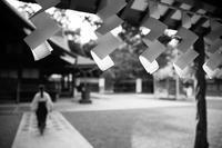 静かな時間 - 相模原・町田エリアの写真サークル「なちゅフォト」ブログ!