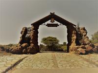 【アフリカサファリ旅】マニャラ湖 - Fine Days@Addis Ababa