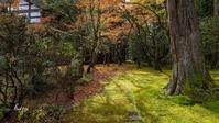 那谷寺の紅葉 - 晴れ時々そよ風