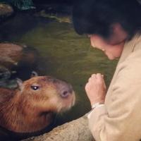 動物たちに癒されて・・・ - シマリスママの布あそび