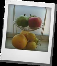 秋の果物 - khh style