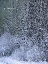 霜の世界 2 - f's note ak