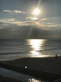 久しぶりの七里ガ浜ダブルドアーズへ - パームツリー越しにgood morning        アロマであなたの今に寄り添うブログ