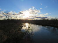 久しぶりの釧路湿原 - 湿原と海のそばで
