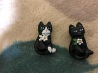 2ヶ月遅れのプレゼント - 愛犬家の猫日記