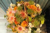雑貨店開店祝いの花 - 北赤羽花屋ソレイユの日々の花