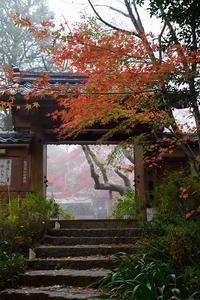 2018京都の紅葉・亀岡神蔵寺 - デジタルな鍛冶屋の写真歩記