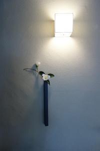 冬の白ー白侘助 - g's style day by day ー京都嵐山から、季節を楽しむ日々をお届けしますー