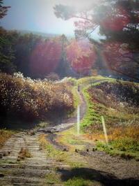 浅間牧場 * 標高1,300mの大パノラマ @北軽井沢 - ぴきょログ~軽井沢でぐーたら生活~