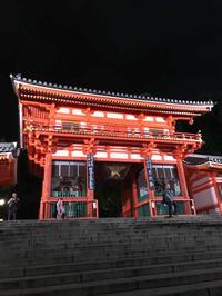 フレンチ祇園バル丸橋 - 猫と、旅する猫用カメラ