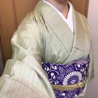 11/14の着物 - uzuz玉手箱
