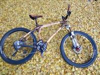 自転車のある風景69   イチョウ - じてんしゃでグルメ!3