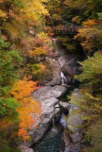 みたらい渓谷紅葉ハイキング-2 - ぶらり休暇