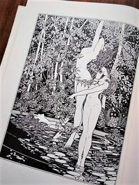 ジョン・オースティンのモノクローム画 - Books