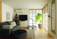 リビングの模様替えクリスマスツリーと長男の掛け軸 - シンプルで心地いい暮らし