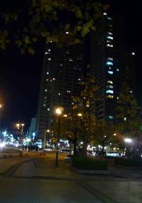 夜のお散歩。 - Happy world by yoshiko