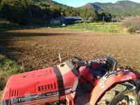 秋晴れ農作業 - 農と自然のさんぽみち・やまだ農園日記