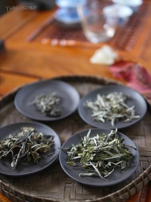 中国茶講座 -