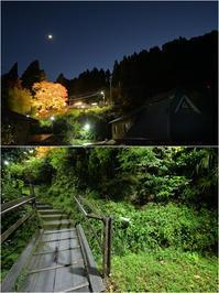 叡電・二ノ瀬駅、秋のライトアップ - あ お そ ら 写 真 社