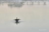 冷え込んだ朝@ 水上池 - 東大寺が大好き