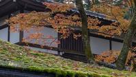 那谷寺 琉美園・三尊石 - 晴れ時々そよ風