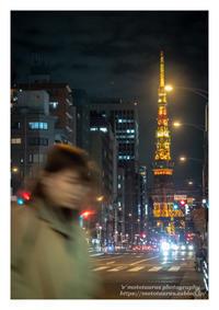 長い夜 寒い夜 - ♉ mototaurus photography