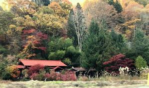 """秋の木曽路  其の五 """"赤沢自然休養林""""を歩く - FK's Blog"""