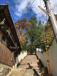 船岡山 建勲神社 - 京都西陣 小さな暮らし