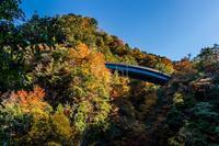 高野大滝 - toshi の ならはまほろば