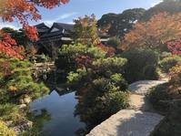 11/16店長日記 - 形山水族館「店長のひまつぶし」