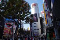 11月16日㈮の109前交差点 - でじたる渋谷NEWS