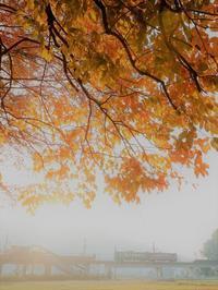霧の朝 - 今日も丹後鉄道