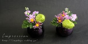 先週の定期装花から スプレー菊 まつげ - Impression Days