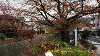 浄土寺・鹿カ谷に行く-1 - 写楽彩2