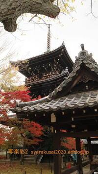 浄土寺・鹿カ谷に行く-4 - 写楽彩2