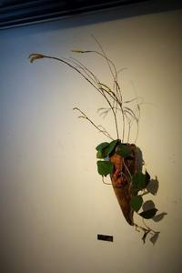 近藤正彦 陶展-なよびかなるかたち-本日最終日です - 工房IKUKOの日々