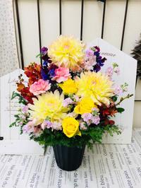 今日のご注文 - hanazakka*花雑貨