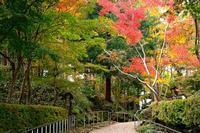 松雲山荘 - くろちゃんの写真
