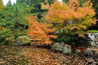 松雲山荘2 - くろちゃんの写真