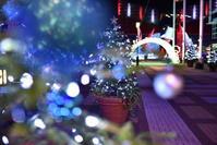 大阪南港天保山にある水族館海遊館の2018イルミネーション - ビギナーズ写真ブログ