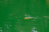神秘の湖 - PhotoWalker*
