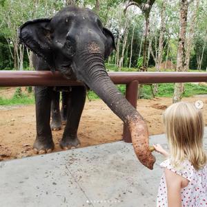 家族旅行2018 タイ。ELEPHANT SANCTUARY - おいしいは嬉しい