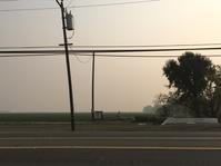 山火事の話と新しいiPad - ちょっと田舎暮しCalifornia