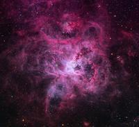 南天の大マゼラン雲の美しいタランチュラ星雲NGC2070 - 秘密の世界        [The Secret World]