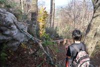 カサッカサ♪・・・荒島岳を歩く♪ - yukoの絵日記