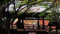 浄土寺・鹿カ谷に行く-6 - 写楽彩2