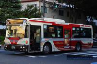 (2018.10) 関東バス・D1256 - バスを求めて…