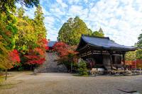 京の紅葉2018神護寺・秋の彩り - 花景色-K.W.C. PhotoBlog